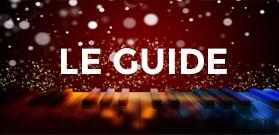 guide conseil Arbre de noel